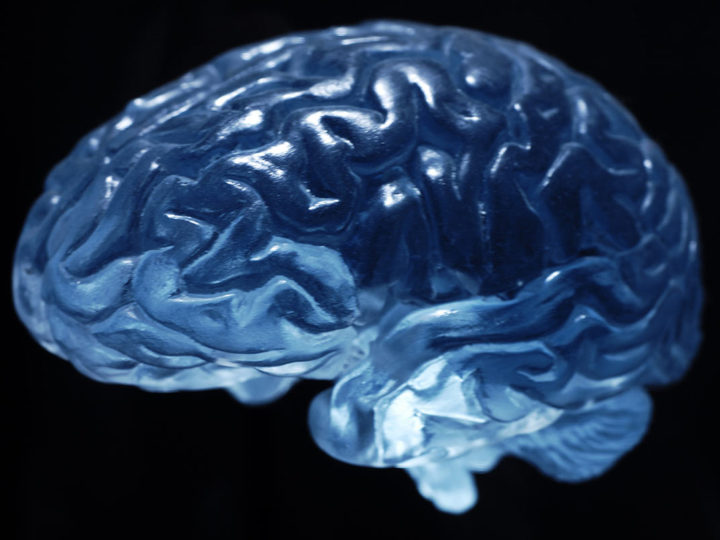 Tips to Boost your Brain Health